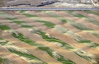Farm fields near Ft. Collins, Colorado.