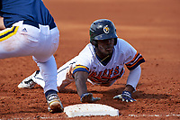 Canisius College Golden Griffins center fielder Cyrus Senior (17) dives back to first base during the second game of a doubleheader against the Michigan Wolverines on February 20, 2016 at Tradition Field in St. Lucie, Florida.  Michigan defeated Canisius 3-0.  (Mike Janes/Four Seam Images)