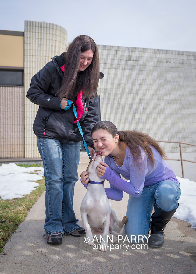 Wantagh, New York, USA. February 7, 2016. EMILY smiles as Halley the beagle licks her on the face, as the teen and her Mom SARI, volunteers from Merrick, take the friendly dog, who is available for adoption, for a walk during Last Hope Animal Rescue's Open House during Hallmark Channel Kitten Bowl III. The center's guests watched the feline football games on TV and cheered for their team, the Last Hope Lions. Over 100 adoptable kittens from Last Hope Inc and North Shore Animal League America participated in the games for the 2016 championship, which first aired the day of Super Bowl 50.
