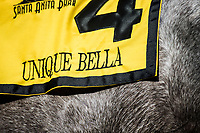 ARCADIA, CA - FEBRUARY 10: Unique Bella at Santa Anita Park on February 10, 2018 in Arcadia, California. (Photo by Alex Evers/Eclipse Sportswire/Getty Images)