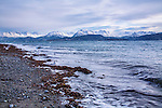 A Cold Alaskan Beach With Snow Capped Mountains In The Distance, The End Of The Spit At Homer Alaska, Kenai Peninsula, USA