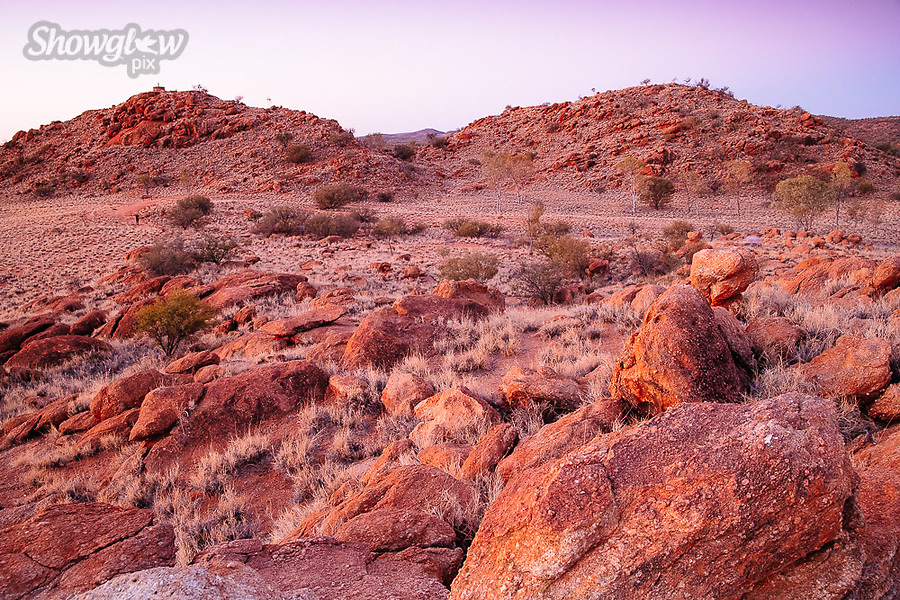 Image Ref: CA652<br />