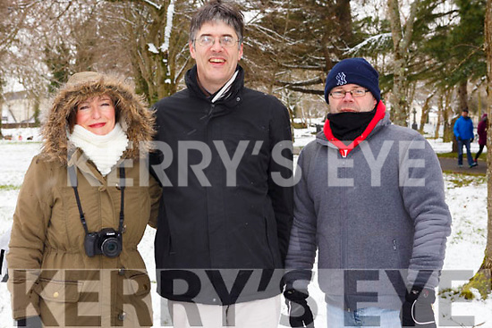 Evelyn and Robert Tangley and Liam McGrath from Tralee having a stroll in the snow covered town park on Friday morning last.