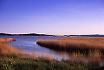 Europe, DEU, Germany, Mecklenburg West Pomerania, Rugen Island, Lietzow, Little Jasmunder Bodden, Typical landscape, Banks, Shore....[ For each utilisation of my images my General Terms and Conditions are mandatory. Usage only against use message and proof. Download of my General Terms and Conditions under http://www.image-box.com or ask for sending. A clearance before usage is necessary...Material is subject to royalties. Each utilisation of my images is subject to a fee in accordance to the present valid MFM-List...Contact | archive@image-box.com | www.image-box.com ]