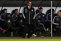 Sunday, 28 November 2012<br /> Pictured: Steve Clarke.<br /> Re: Barclays Premier League, Swansea City FC v West Bromwich Albion at the Liberty Stadium, south Wales.
