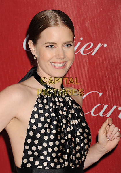 PALM SPRINGS, CA- JANUARY 04: Actress Amy Adams arrives at the 25th Annual Palm Springs International Film Festival Awards Gala at Palm Springs Convention Center on January 4, 2014 in Palm Springs, California.<br /> CAP/ROT/TM<br /> &copy;Tony Michaels/Roth Stock/Capital Pictures