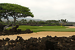 Hawaiian Island golf course detail
