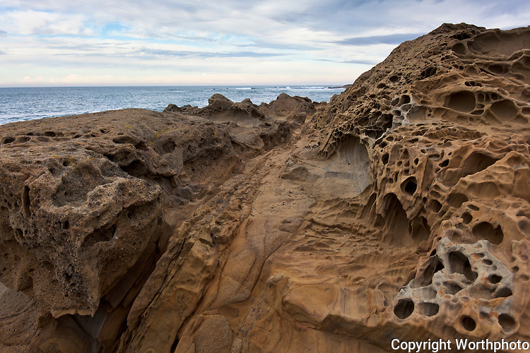 Tafoni formations give the appearance of an alien planet to the landscape along Bean Hollow State Beach, California.