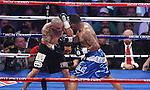 Miguel Cotto retiene su título mediano Jr. AMB al vencer al Mayorga , el 12 asalto  Mayorga no quiso continuar el combate por presunta lesion en su mano izquierda