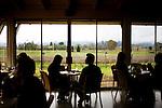 Western views of the vineyards and the Mayacama Mountains, at Mumm Napa, Rutherford, Ca., on Saturday, Feb. 6, 2010.