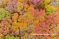 63876-02520 Aerial view of fall color trees Stephen A. Forbes State Park Marion Co. IL