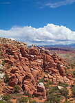 Arches National Park, UT<br /> Fiery Furnace sandstone formation with the LaSal mountains in the distance