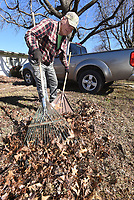 NWA Democrat-Gazette/FLIP PUTTHOFF <br /> FRONT LAWN SPRUCE UP<br /> Gerry Stowe with Gerry's Lawn Service rakes leaves on Tuesday Jan. 8 2019 in Rogers. Stowe was doing yard work at homes near 15th and Sycamore streets.