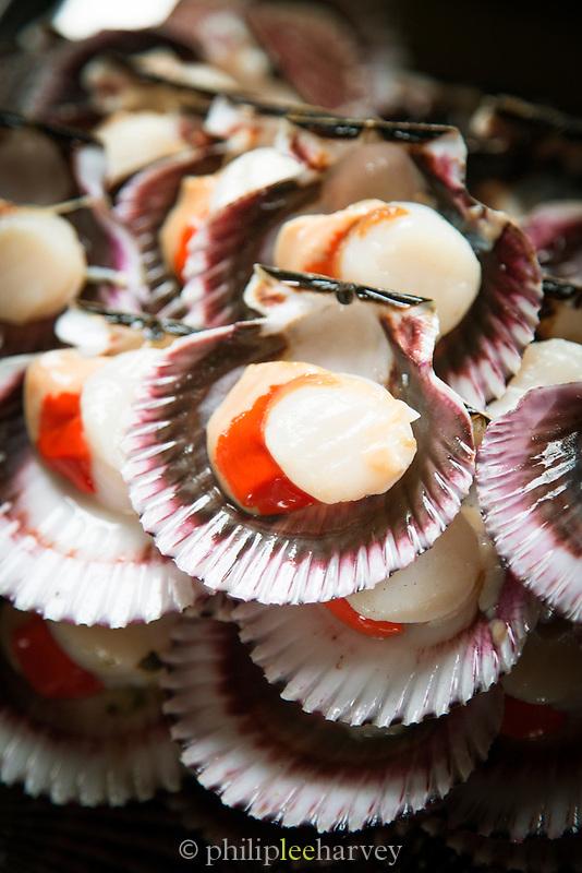 Scallops from the Fish Market in Villa Mar?a del Triunfo district of Lima, Peru, South America