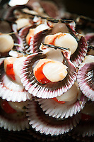 Scallops from the Fish Market in Villa Mar?a del Triunfo district of Lima, Peru, South America