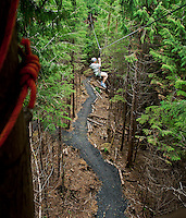 Woman enjoys a zipline adventure through the trees, Ketchikan, Alaska, USA.