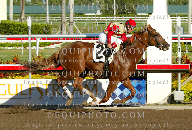 Corinthian #2 with Javier Castellano riding won the featured 7th race at Gulfstream Park in Hallandale, Florida over 2nd place finisher Jazil, the 2006 Belmont Stakes Champion on Thursday February 8, 2007. Photo By Justin Dernier/EQUI-PHOTO.