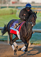 Prospective, trained by Mark Casse and to be ridden by Luis Contreras exercises in preparation for the 2011 Breeders' Cup at Churchill Downs on November 1, 2011.
