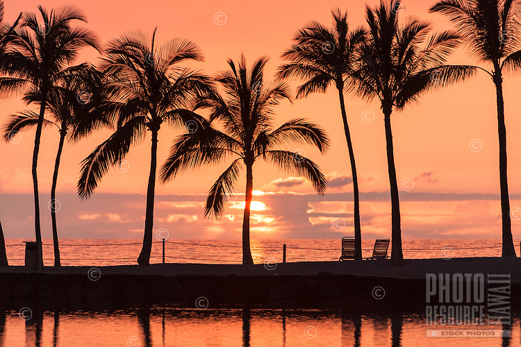 A colorful sunset with palm trees at the Waikoloa pond, Big Island.
