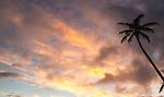 Evening sky in Rarotonga, Cook Islands
