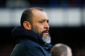2nd February 2019, Goodison Park, Liverpool, England; EPL Premier League Football, Everton versus Wolverhampton Wanderers; Wolverhampton Wanderers manager Nuno Espirito Santo before the kick off