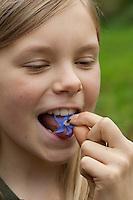 Borretsch, Gurkenkraut, Mädchen isst die essbaren und schmackhaften Blüten, Blüte auf der Zunge, Borago officinalis, Borage, Bourrache