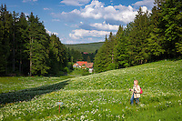 Germany, Thuringia, near Vesser (Suhl): hiking at biosphere reserve Vesser Valley | Deutschland, Thueringen, bei Vesser (Suhl): Wandern im Biosphaerenreservat Vessertal