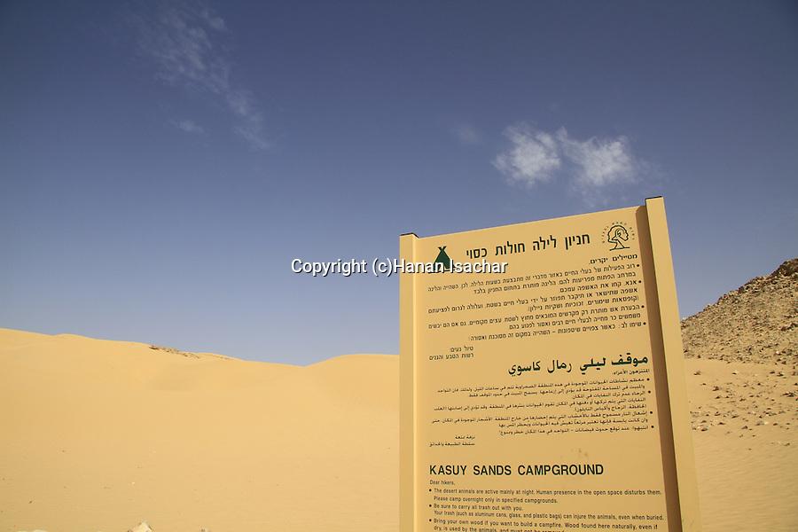 Israel, Negev, Kasuy dunes in Ovda valley