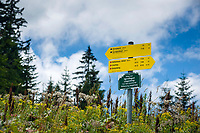 Deutschland, Bayern, Chiemgau, Ruhpolding: Wanderwegweiser zur Hoerndlwand an der Hoerndlalm | Germany, Bavaria, Chiemgau, Ruhpolding: hiking signpost at alpine pasture Hoerndlalm
