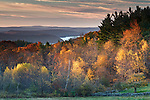 Early morning light illuminates some fall color overlooking the Quabbin Reservoir.