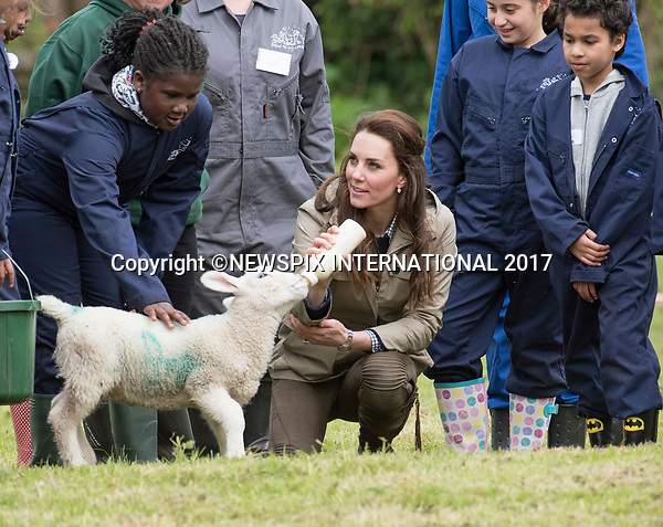 03.05.2017; Gloucester, UK: DUCHESS OF CAMBRIDGE FEEDS STINKY THE LAMB<br />