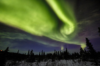 Winter landscape of Northern Lights (Aurora Borealis) as they dance over the tundra of interior Alaska just north of Fairbanks at Cleary Summit