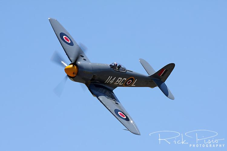 "Hawker Sea Fury ""Argounaut"" in flight during the 2011 Pylon Racing Seminar."
