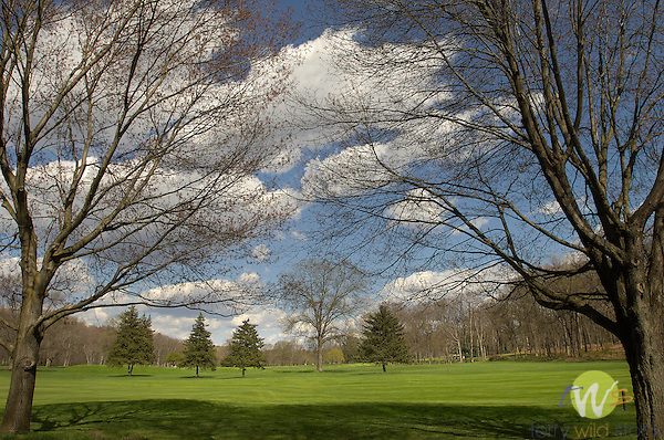 Williamsport Golf Course- Spring