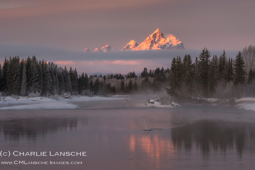 "Rising Above the Mist. The Grand Teton rises through mist and fog on a sub-zero January morning along the Snake River in Teton National Park. As a lover of nature, this was one of ""those"" moments. I had wanted to photograph this location for some time, and finally seized the opportunity last Sunday. Snowshoeing along the river's edge through deep snow in pitch-black using my headlamp, I heard the unmistakable slap of a beaver's tail against the icy waters of the Snake signaling a warning that I was now in its territory. I found a place in thick willows and set up my camera to align the mountain reflection in the water and waited for the light. As the first rays of sun touched the 13,700 foot summit of the Grand, a long, deep howl rose from the timber across the river, followed by several more. Goose bumps covered my body as I realized that I was now in the presence of wolves. I remained still, hoping they would move into sight. And while they did not reveal themselves, knowing they were close was an absolute thrill. As a nature photographer, it's easy to become consumed with getting ""the image"" and it's wonderful to be reminded that the greatest reward is the privilege of bearing witness to wilderness and wild places. May it always be that way."