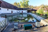 France, Indre-et-Loire (37), Chenonceaux, château et jardins de Chenonceau, la ferme et galerie des attelages dans l'étable