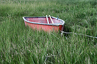 Charming rowboat in wetland grass.