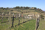 Tuscan wine country during the 2015 Strade Bianche Eroica Pro cycle race which takes place over the white gravel roads from San Gimignano to Siena, Tuscany, Italy. 6th March 2015<br /> Photo: Eoin Clarke www.newsfile.ie