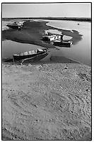Uzbekistan - Amu darya river nearby Nukus.