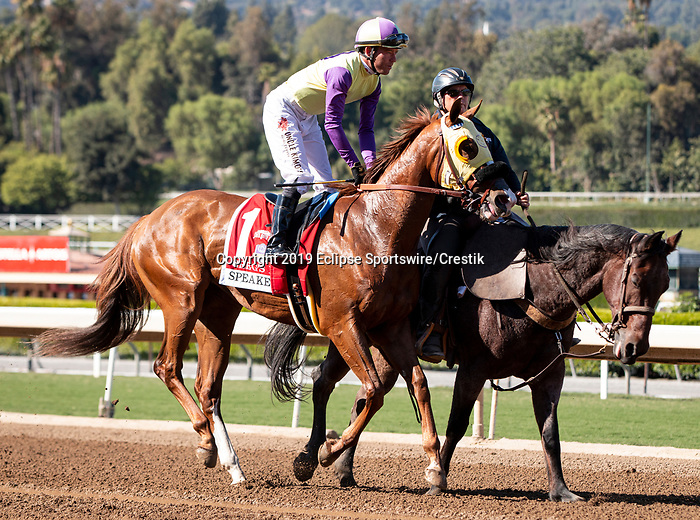 ARCADIA, CA: October 06: #1 Gregs Diva with jockey Tyler Base before the Speakeasy Stakes at Santa Anita Park on October 06, 2019 in Arcadia, California (Photo by Chris Crestik/Eclipse Sportswire)