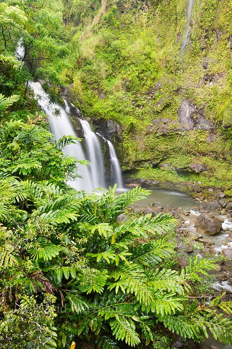 One of many roadside waterfalls on the road to Hana, Maui, Hawaii.