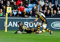 Wasps v Tigers 20170108