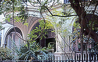 Charleston:  Charleston Estate--Window, Piazza, Vines.  Photo '78.