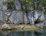 British Columbia, Canada:<br /> Detail of rock wall at waters edge, Homfray Channel, Desolation Sound