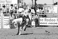 Spectacular action shots taken from Yuma's Annual Silver Spur Rodeo held at the Yuma County Fair Grounds.