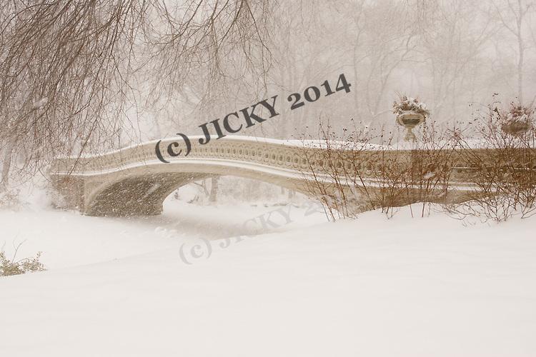 Central Park Bow Bridge