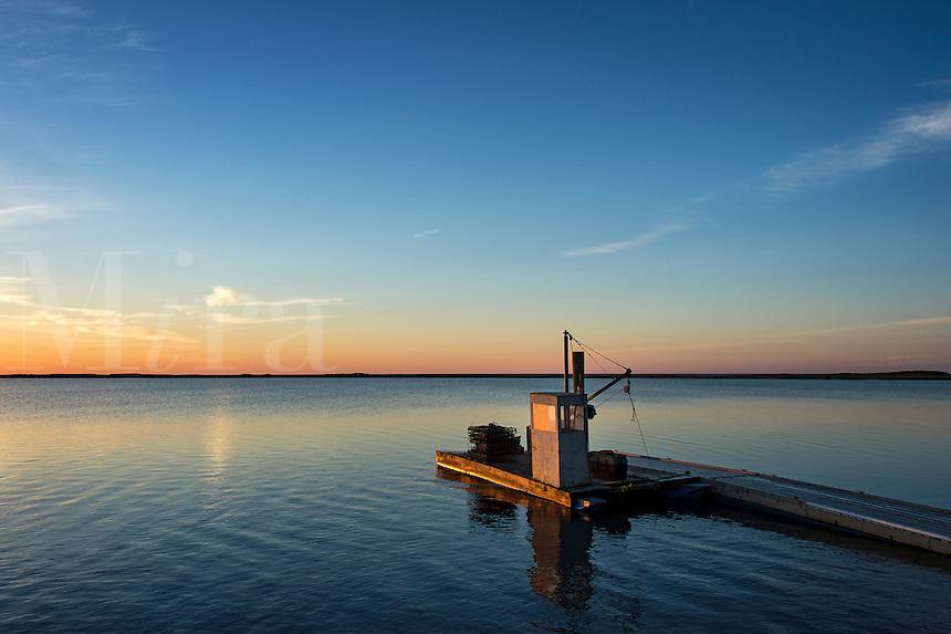 Floating dock at sunrise, Crackatuxet Cove, South Beach, Martha's Vineyard, Massachusetts, USA