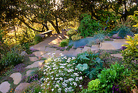 Patio deck on hillside with steps in California garden with stonework, naturalized plants, vegetable garden, and native trees.