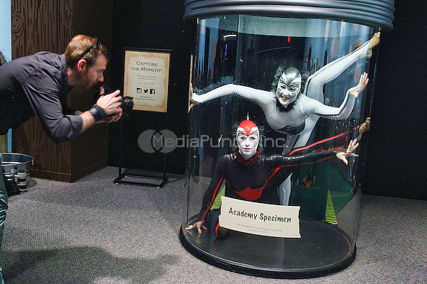 PHILADELPHIA, PA - April 19 : ***HOUSE COVERAGE*** Cirque du Soleil's Spider Contortionist performance pictured at Academy of Natural Sciences at Drexel University in Philadelphia, pa on April 19, 2016. Credit: Star Shooter/MediaPunch