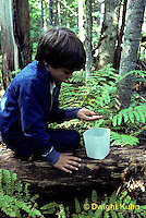 DT02-035z  Forest - boy collecting organisms from soil
